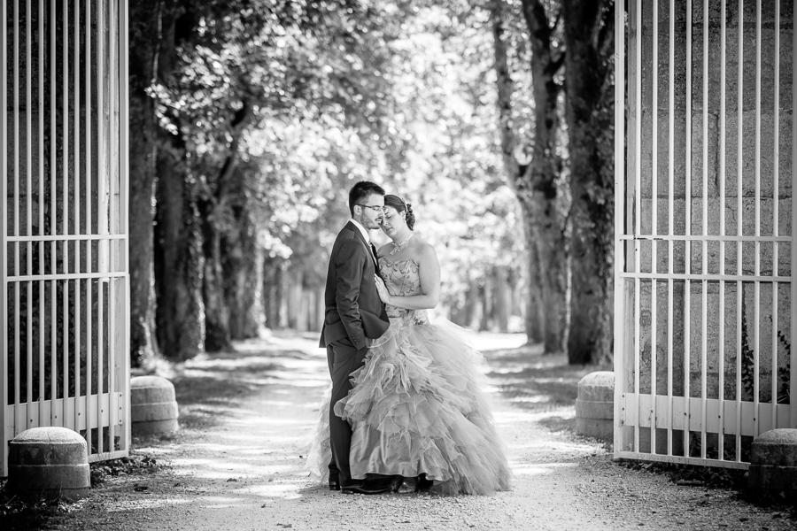 Mariage-Dijon-Cote-dor-21