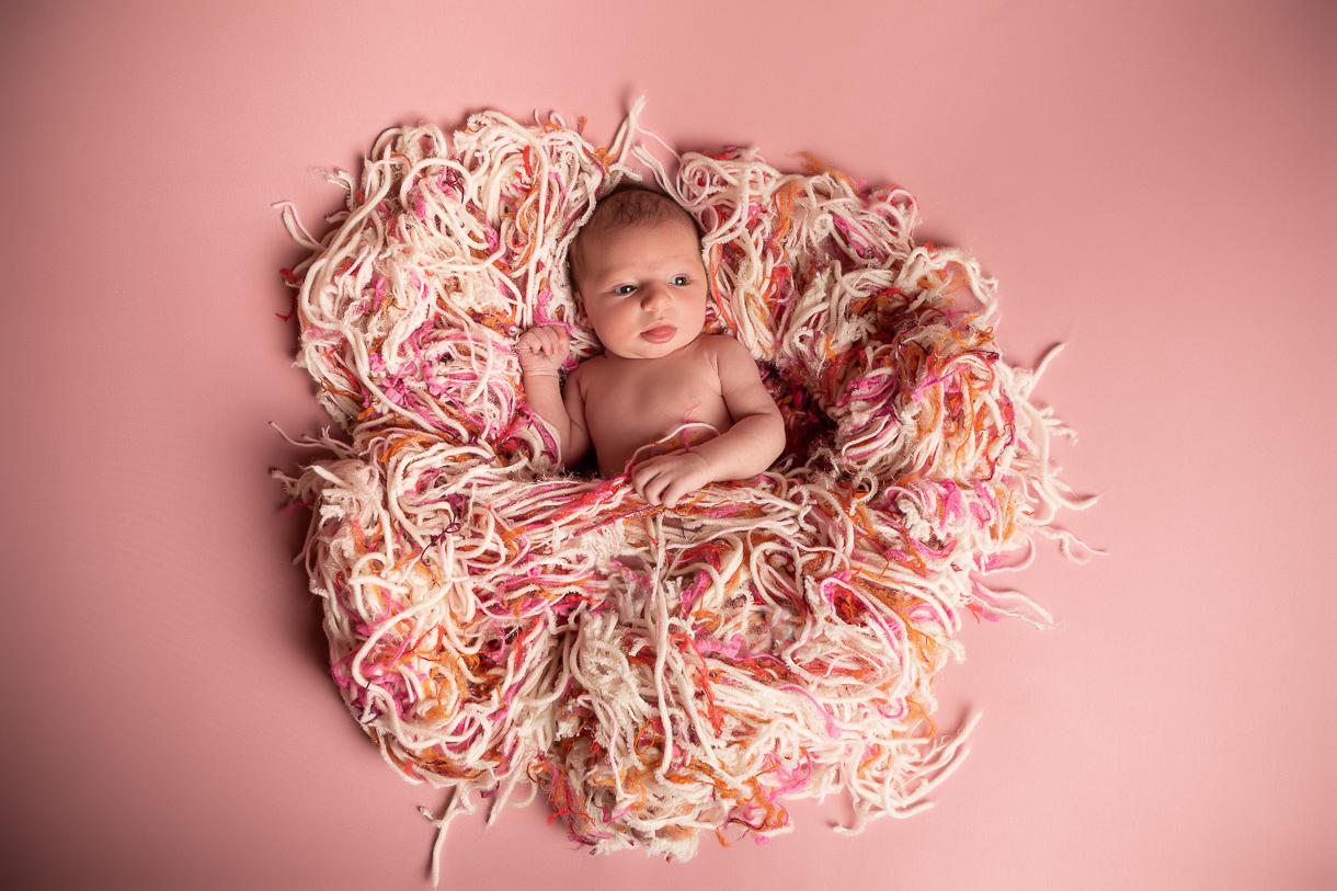 Newborn futur maman Nevers